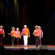 SCAPADES 2017 - country Moulin