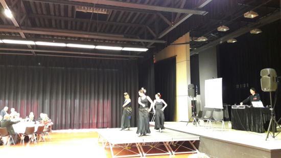 Flamenco taillan 2