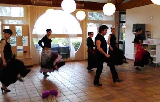 Stage flamenco meduli